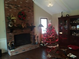 First Christmas in our new NC home.JPG